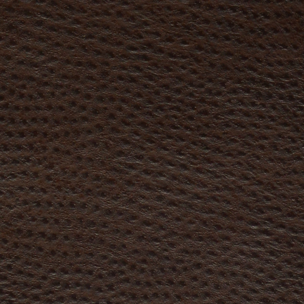 Phoenix- Chocolate