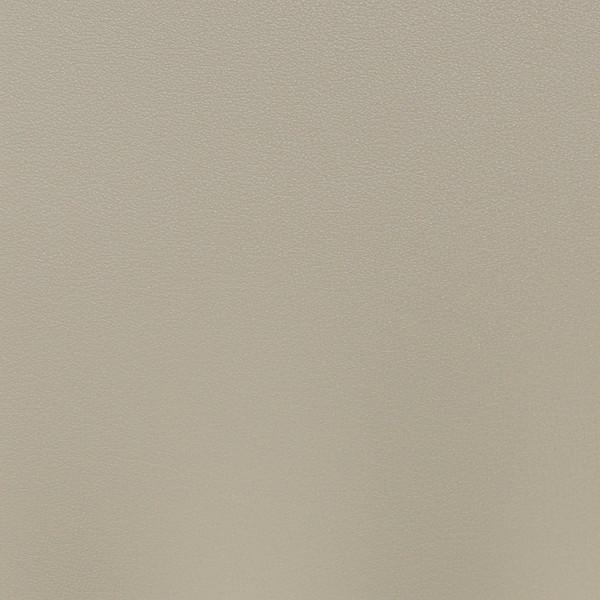Salinger- Canvas