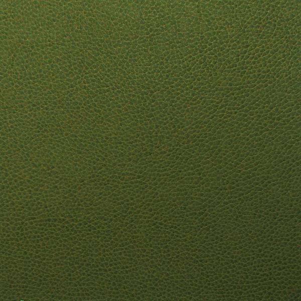 Tolstoy- Celtic