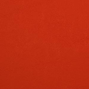 Primary Vinyls- Orange