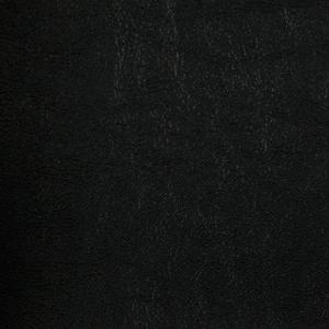 Primary Vinyls- Sierra Black