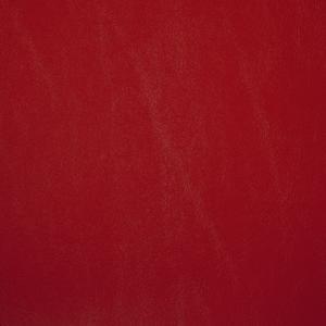 Primary Vinyls- Tomato