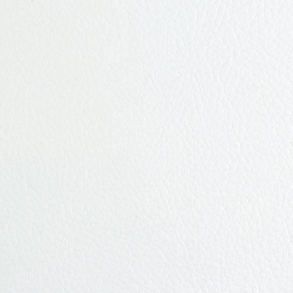 Envision- White