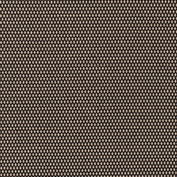 Oneida- Domino