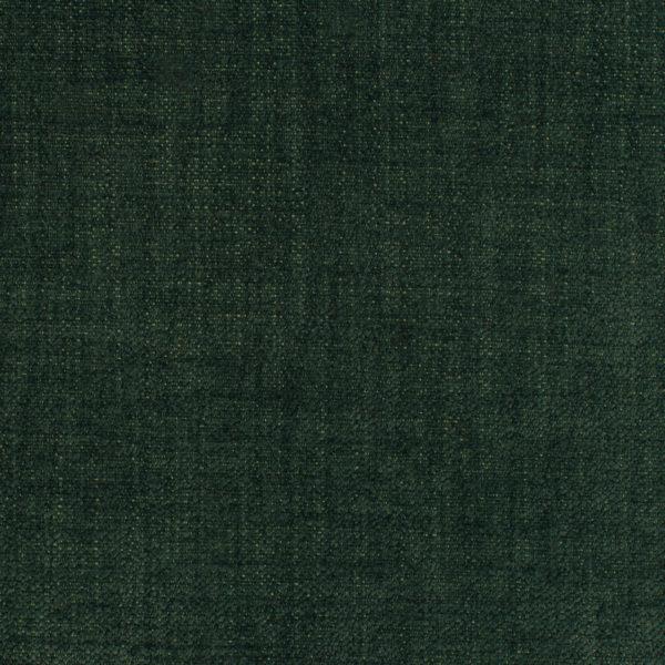 Como- Evergreen