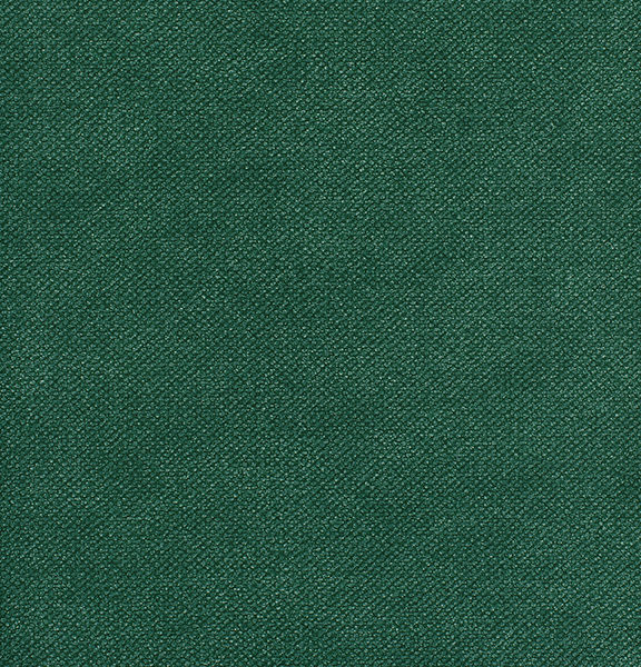 Notion- Ivy