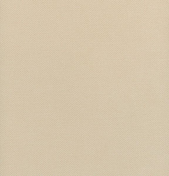 Notion- Linen